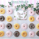 Donut wall!!